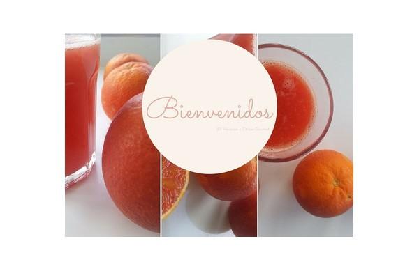 Bienvenidos al blog de Naranjas y Cítricos Gourmet